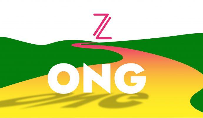 magia baldosas amarillas camino ong digitalización webinar